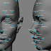 Few Facts on Facial Recognition with Artificial Intelligence