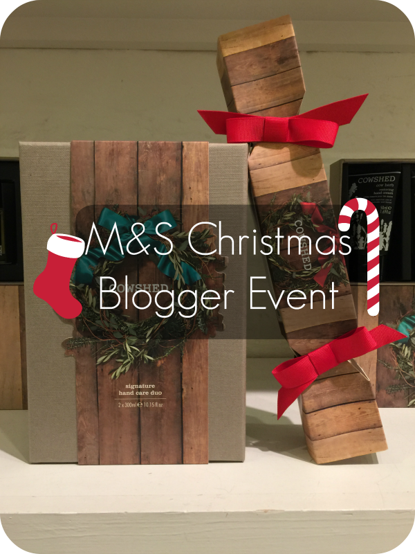 m&s christmas beauty blogger event