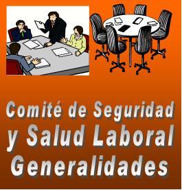 Comite de seguridad y salud laboral 1