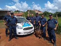 GCM encontra 11 tijolos de maconha na área rural de Itapira