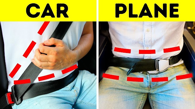 Why do car seatbelts go over the shoulder , And airplane seat belts go around the waist?