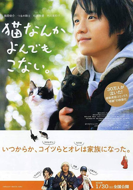 Sinopsis Neko Nanka Yondemo Konai (2016) - Film Jepang