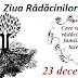 23 decembrie: Ziua Rădăcinilor (Familiale)