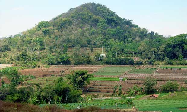 lahan pertanian lereng wukir