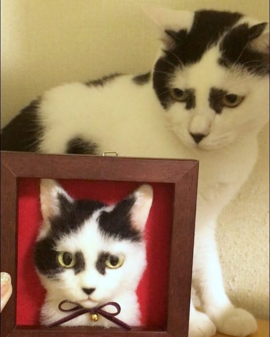 10-Wakuneco-Wool-Needle-Felt-Cat-Portraits-and-Video-Demonstration-www-designstack-co