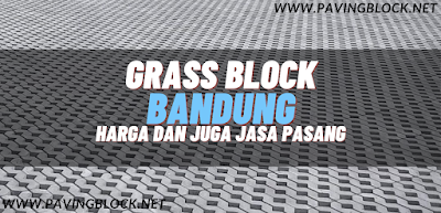 Kegunaan Dari Grass Block