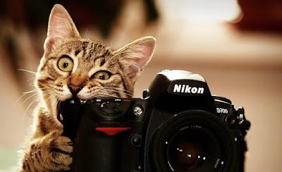 أفضل مواقع بيع الصور الفوتوغرافية و الربح منها 2019 sites to sell photos