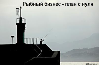 Рыбный бизнес - план с нуля