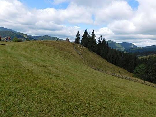 Grzbiet ze skoszoną trawą.