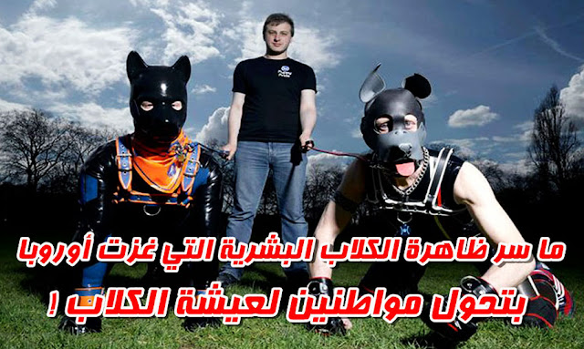 الكلاب البشرية تغزو أوروبا !