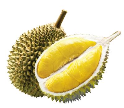 kandungan durian