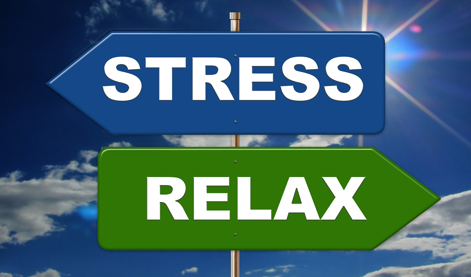Lawyers and Stress: Causes, Effects, and Incredible Stress Management Techniques for Lawyers