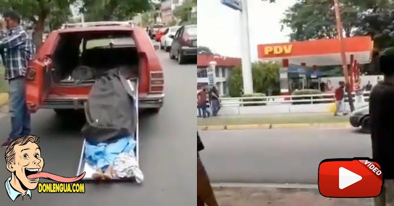 Tuvo que mostrar el cadáver que llevaba para que le vendieran gasolina