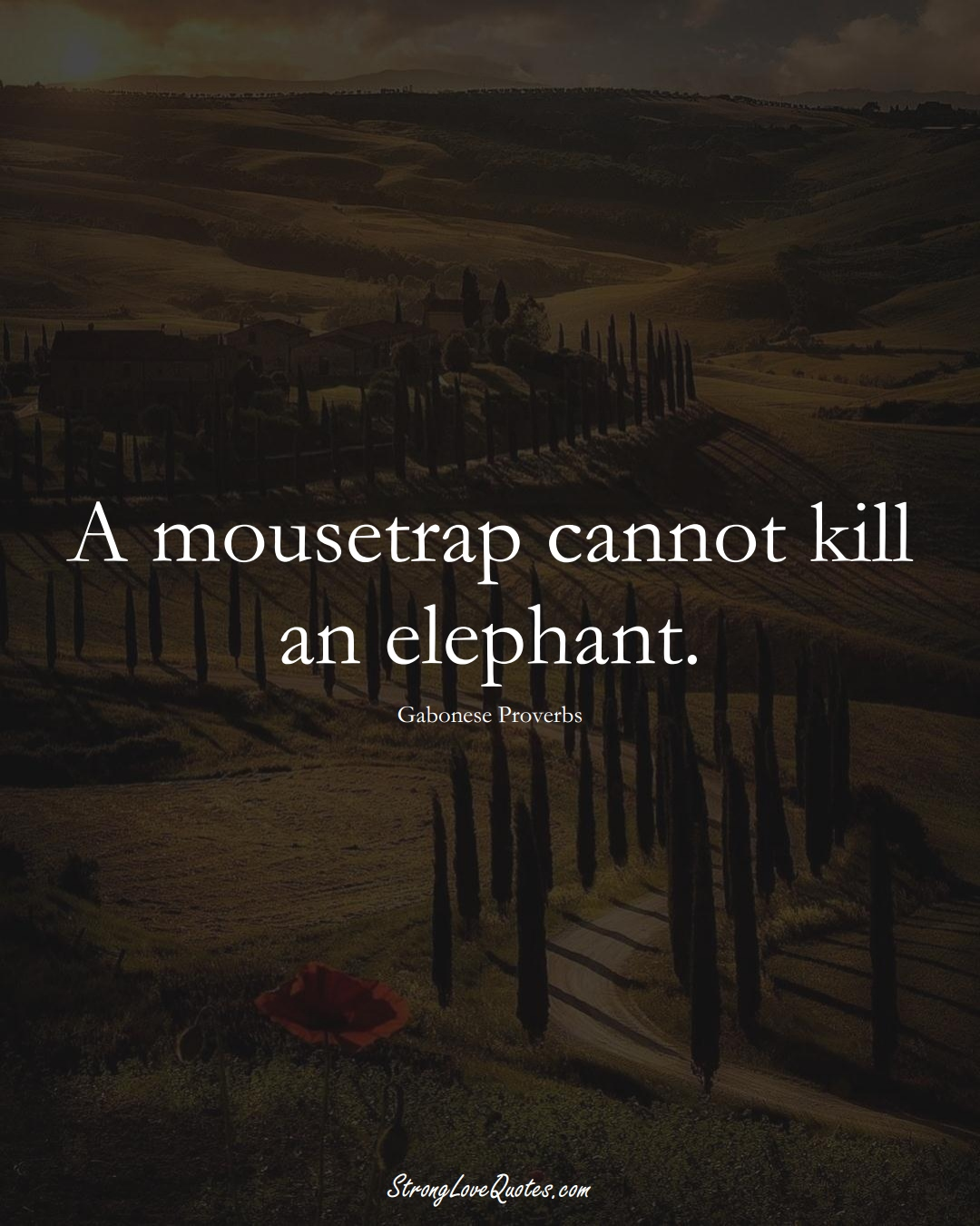 A mousetrap cannot kill an elephant. (Gabonese Sayings);  #AfricanSayings