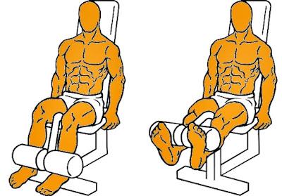 Extensión cuadriceps ejercicio hombre rutina pesas
