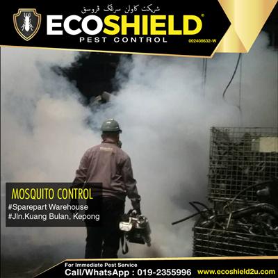 Mosquito Control - Fogging