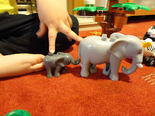 The Elephants marched two by two
