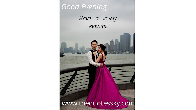 Good Evening Quotes, Status, Wishes, and Image Collections