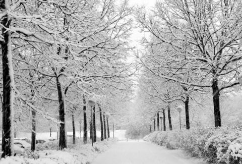 Μερομήνια 2016: Έρχεται βαρύς χειμώνας - Κρύο και χιόνια!