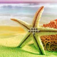 WowEscape-Shell Coastal E…