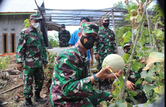 Panen Perdana, Dandim Mengapresiasi Kelompok Petani Melon