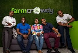 Nigeria's Farmcrowdy Group partners Best Foods to boost meat industry