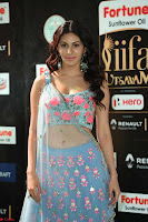 Amyra Dastur in Flower Print Choli Transparent Chunni at IIFA Utsavam Awards026.JPG