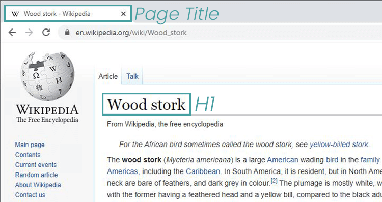 h1 and page title example
