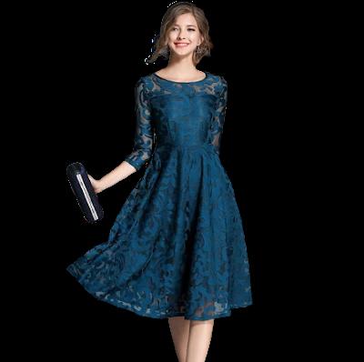 BORISOVICH M107 Casual Lace Dress