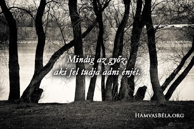 Hamvas Béla, idézet, fák,