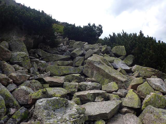 Podejście z Czarnej Doliny na Karb