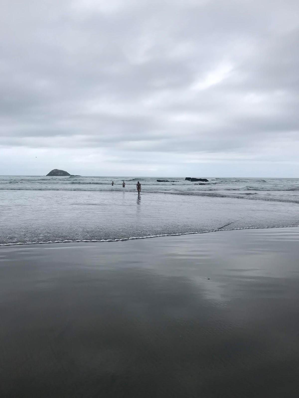 Maori Bay, Muriwai, Auckland, New Zealand