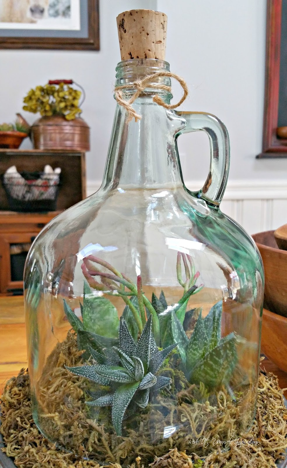 A cloche garden from a repurposed bottle redo it yourself inspirations a cloche garden from