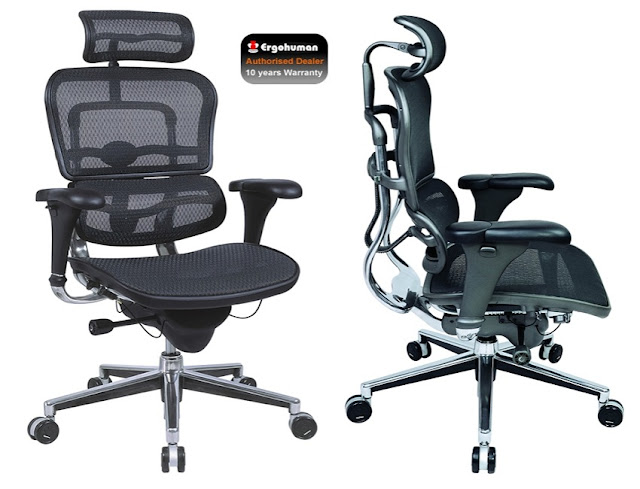 buy best ergonomically correct office chair for sale