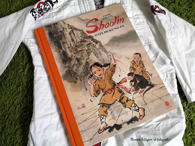 shaolin pays de kungfu
