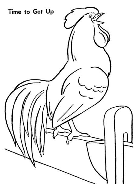 Hình tô màu con gà trống gáy buổi sáng