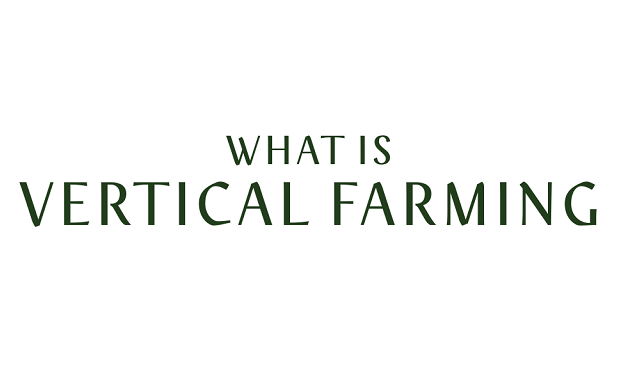 Vertical farming and its influence on agriculture in the future