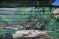 Canberra Street art   Scullin mural by Byrd