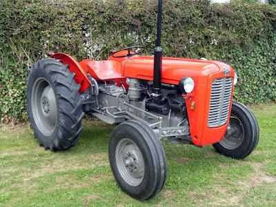 TAFE MF tractor