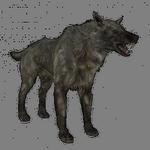 wolf in spanish