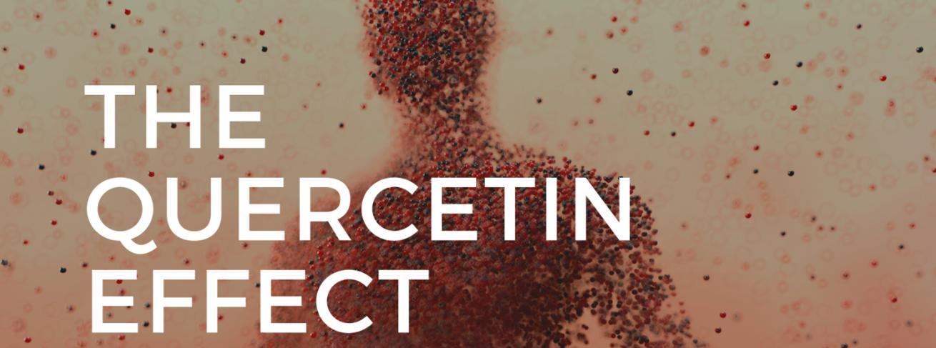 The Quercetin Effect