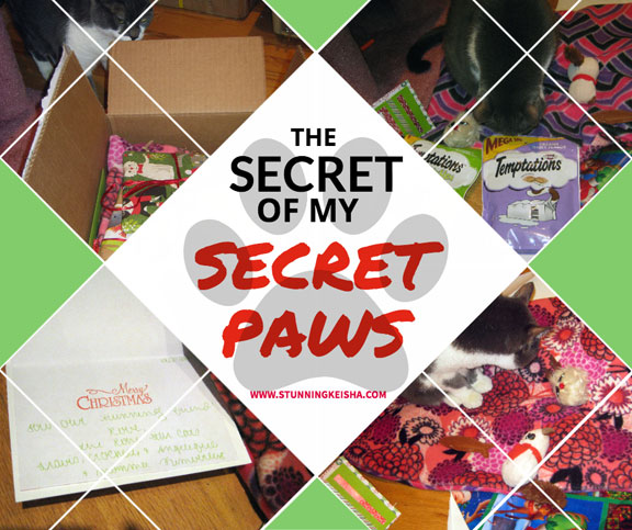 The Secret of my Secret Paws