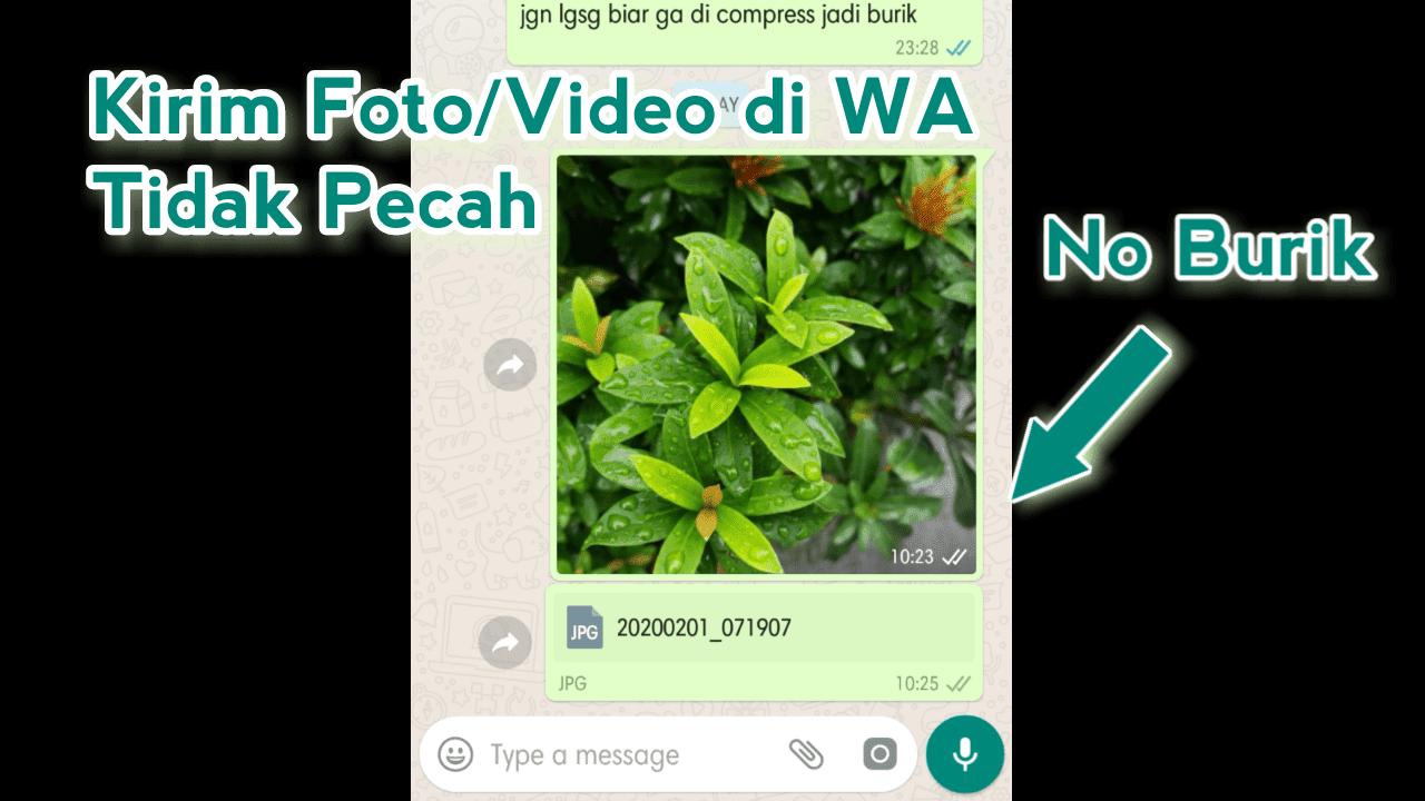 Cara Mengirim Gambar WA Agar Tidak Pecah