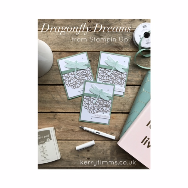 Dragonfly dreams stamp kerry timms handmade card papercraft creative cardmaking gloucester class stampin up