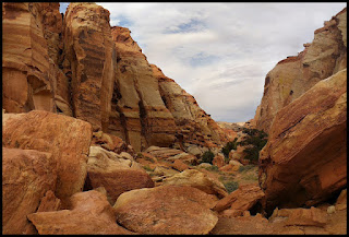 Cohab Canyon Capitol Reef