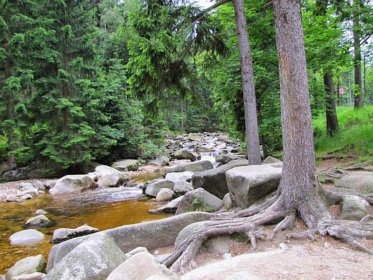 Potok Kamienna przy Kruczych Skałach.