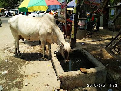 एक सामाजिक चिंतन - प्यास और भूख सबको लगती है ! | Gyansagar ( ज्ञानसागर )