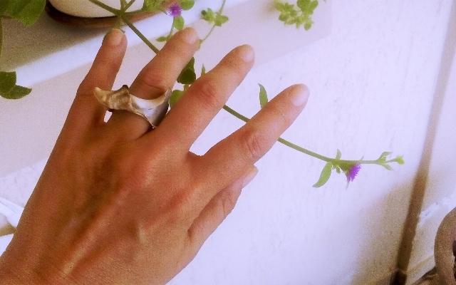 Το κοχύλι έγινε ...δαχτυλίδι