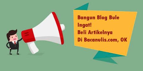 Mari Bangun Blog Bule dan Beli Artikelnya di BacaNulis