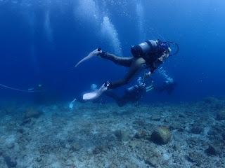 2021年5月9日の柏島ダイビング